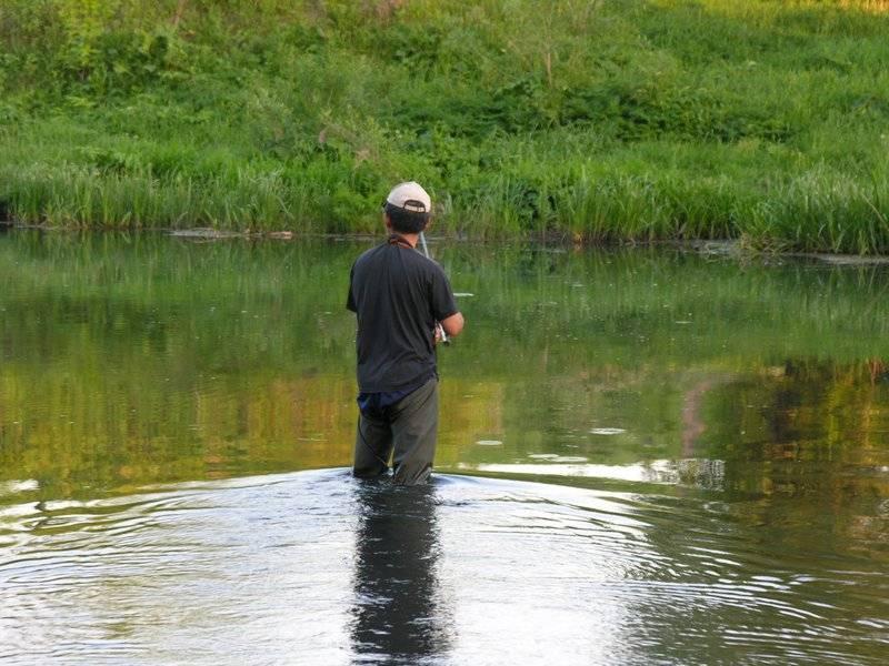 Места для рыбалки в вологодской области – платная и бесплатная рыбалка!