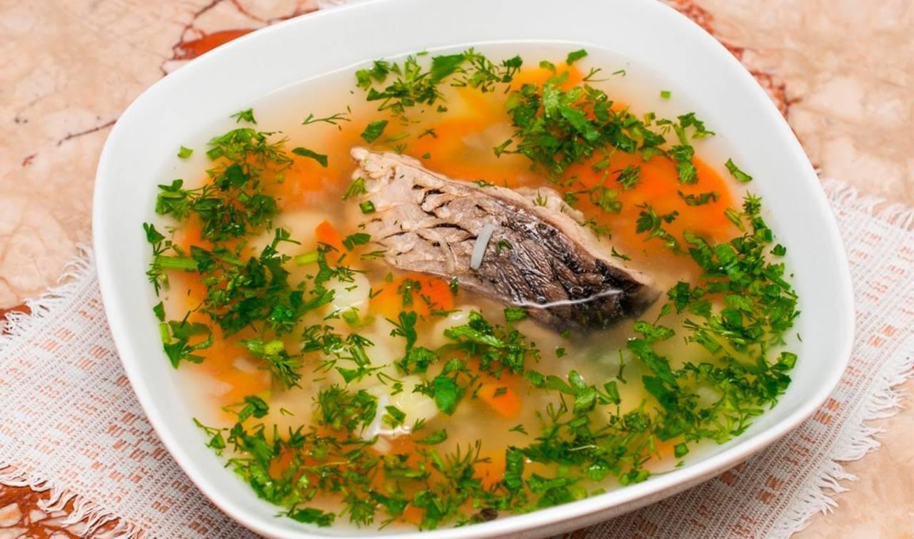 Как варить уху из речной и морской рыбы дома и на костре правильно