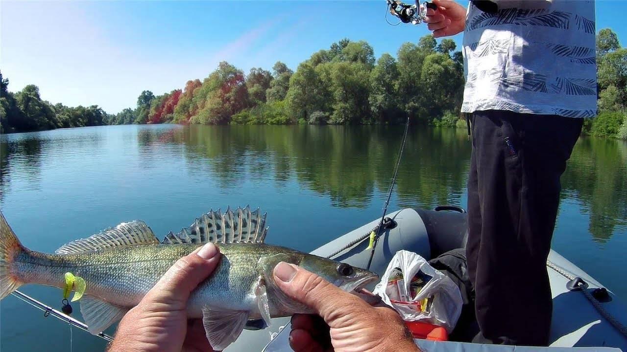 Летняя рыбалка на кубани: 10 советов новичкам