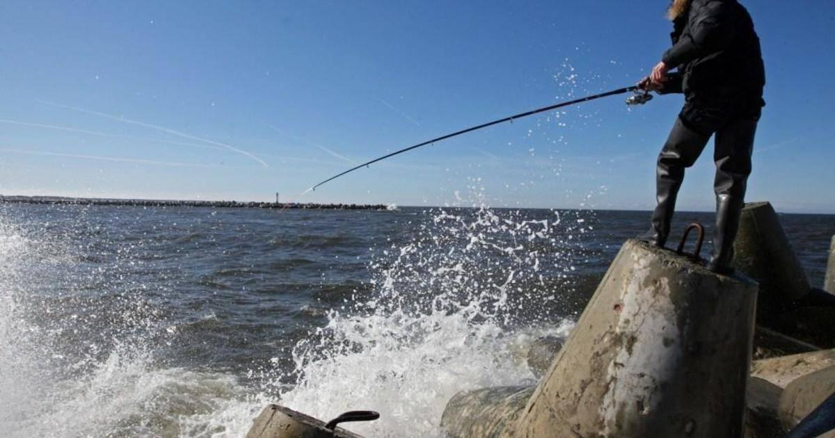 Рыбалка в калининградской области - читайте на сatcher.fish