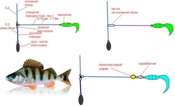 Монтаж отводного поводка - на окуня, судака и щуки видео и способы монтажа
