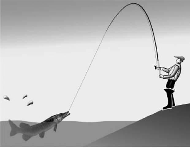 Как ловить на спиннинг для начинающих: правильно пользуемся снастью