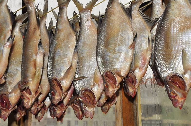 Хранение вяленой и сушёной рыбы