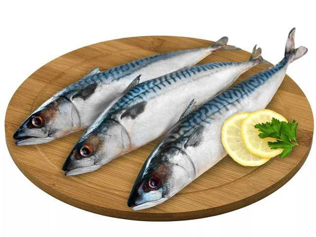 Макрель: что за рыба, описание, фото, как готовить, цена, видео