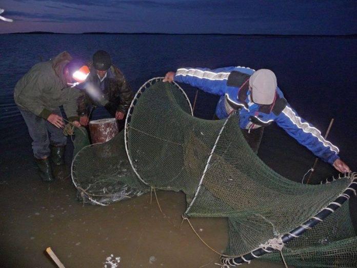 Как ловить рыбу бреднем