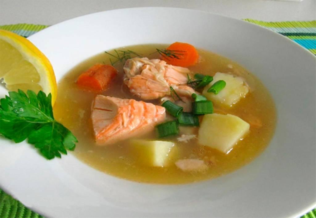Уха из горбуши (21 рецепт с фото) - рецепты с фотографиями на поварёнок.ру
