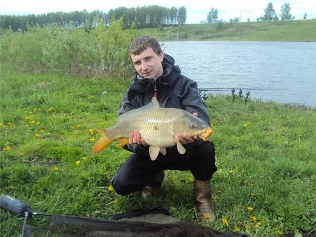 Лучшие водоёмы для рыбалки в тульской области