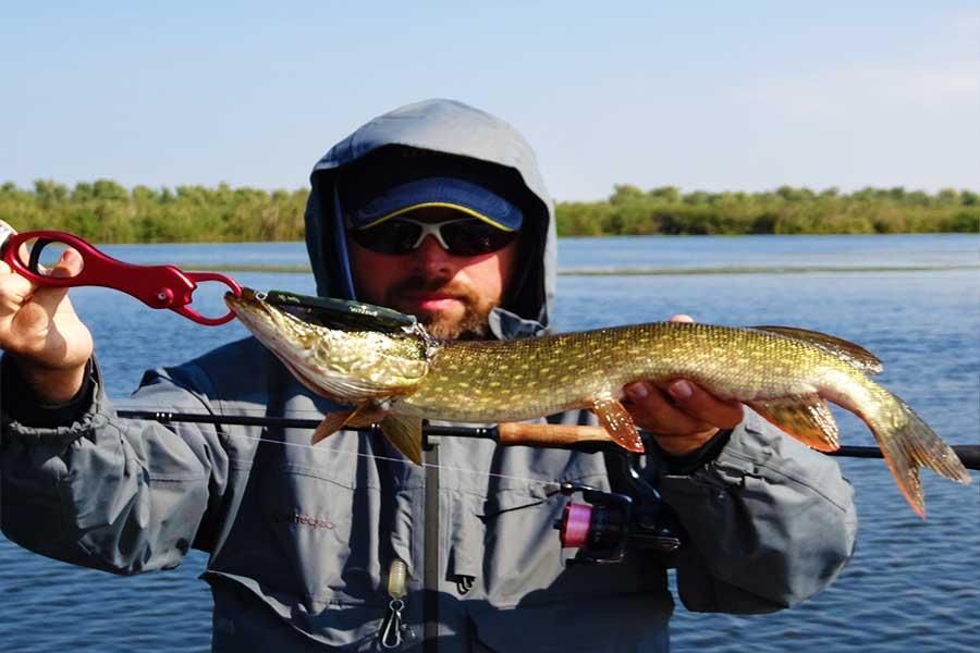 Бесплатная рыбалка в подмосковье - видео, водохранилища, пруды и озера