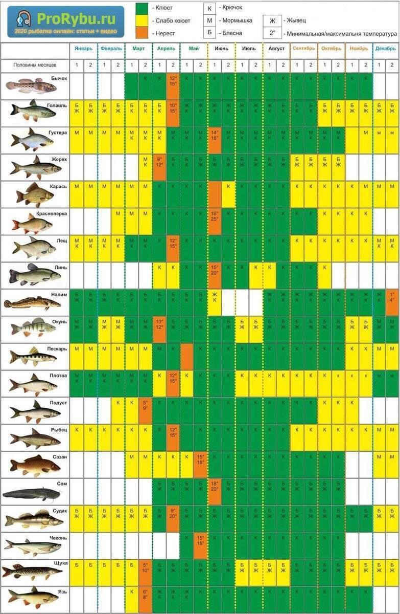 Календарь рыбака июль 2020 лунный рыболова, клева рыбы, рыбалки