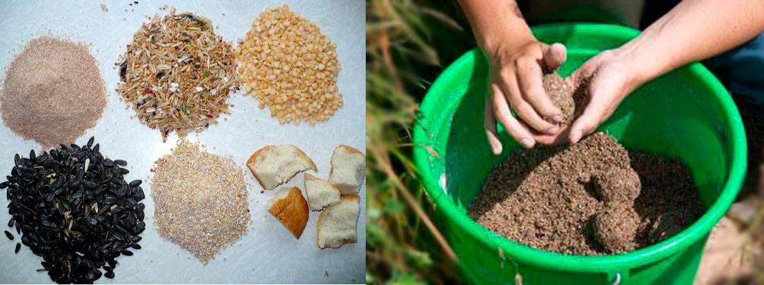 Прикормка для леща - рецепты весной, летом, зимой и осенью, как приготовить своими руками в домашних условиях?