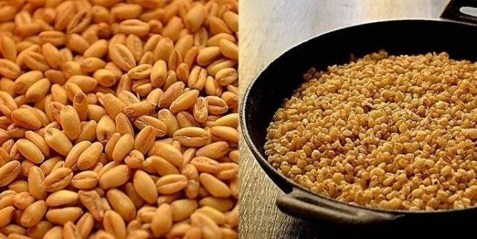 Как запарить пшеницу для рыбалки в термосе: универсальный рецепт