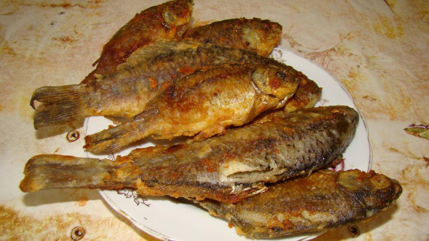 Как пожарить рыбу на сковороде – 7 вкусных рецептов