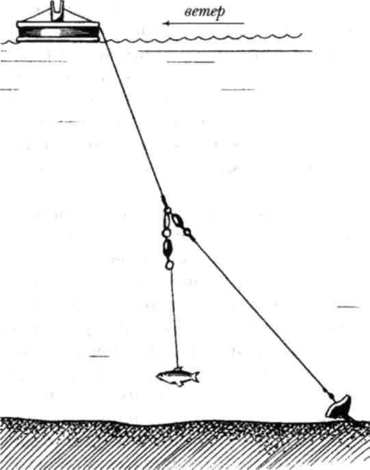 Ловля судака на джиг: виды оснасток и приманок, техника ночной ловли - читайте на сatcher.fish