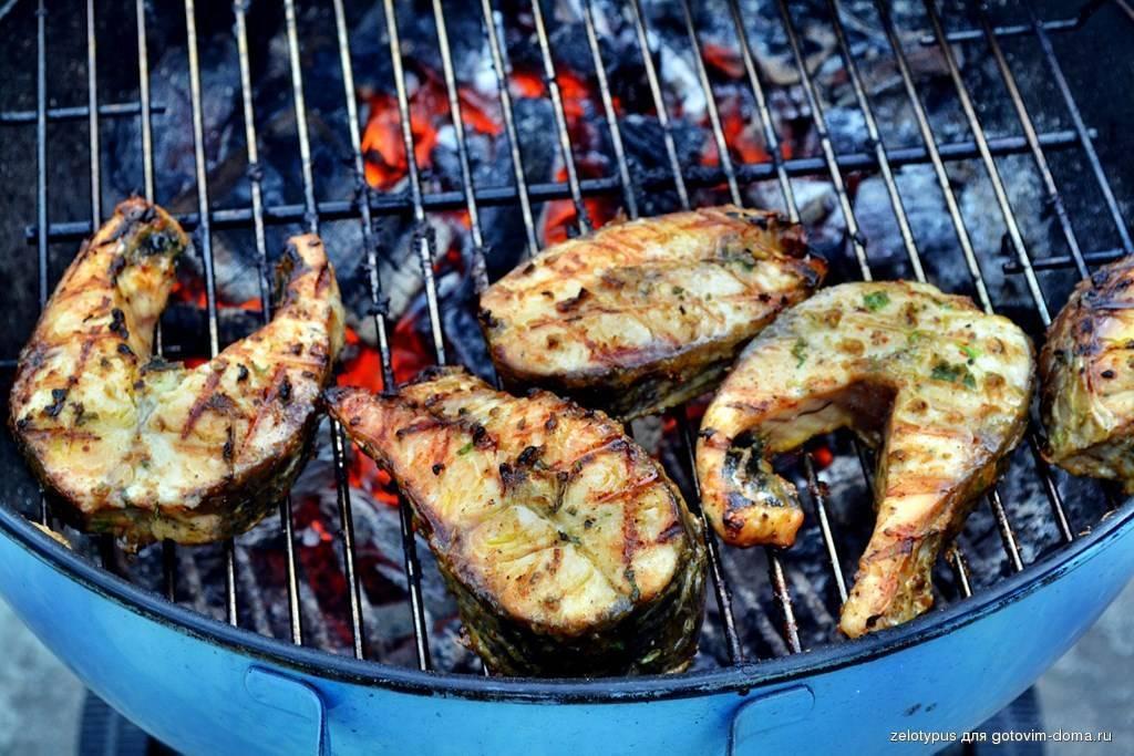 Карп на мангале – вкусная рыба приготовленная с дымком