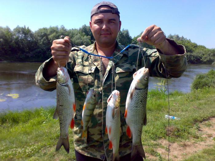 Рыбалка на суре: какие виды водятся в реке мордовии, особенности ловли