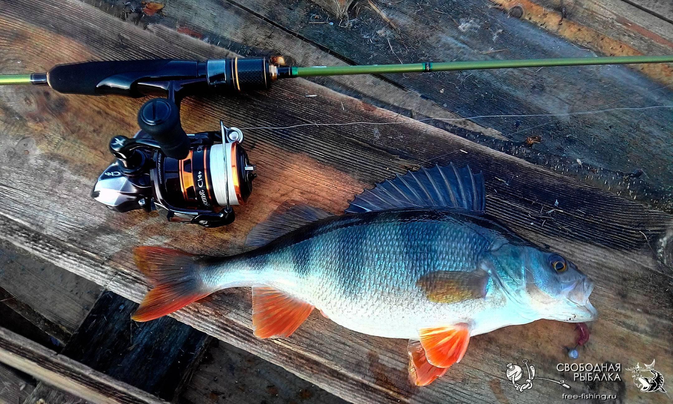 Ловля на ультралайт - читайте на сatcher.fish