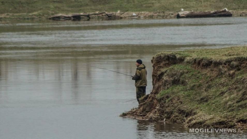 Рыбалка на водохранилище рудея ловля леща щуки в могилевской области