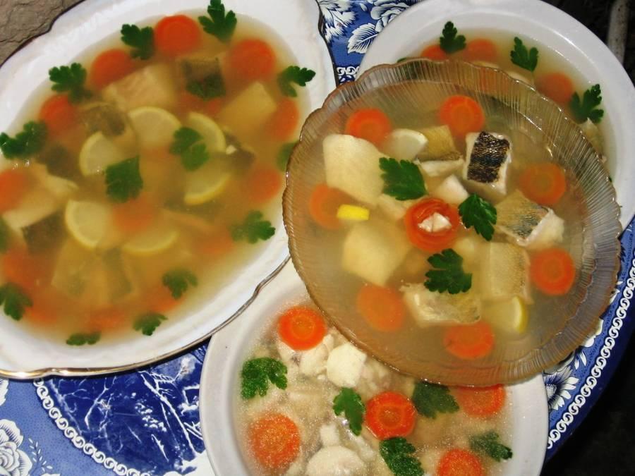 Заливное из рыбы c желатином — 8 простых и вкусных рецептов