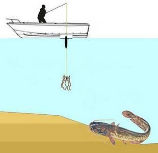Ловля сома на квок — практическое руководство