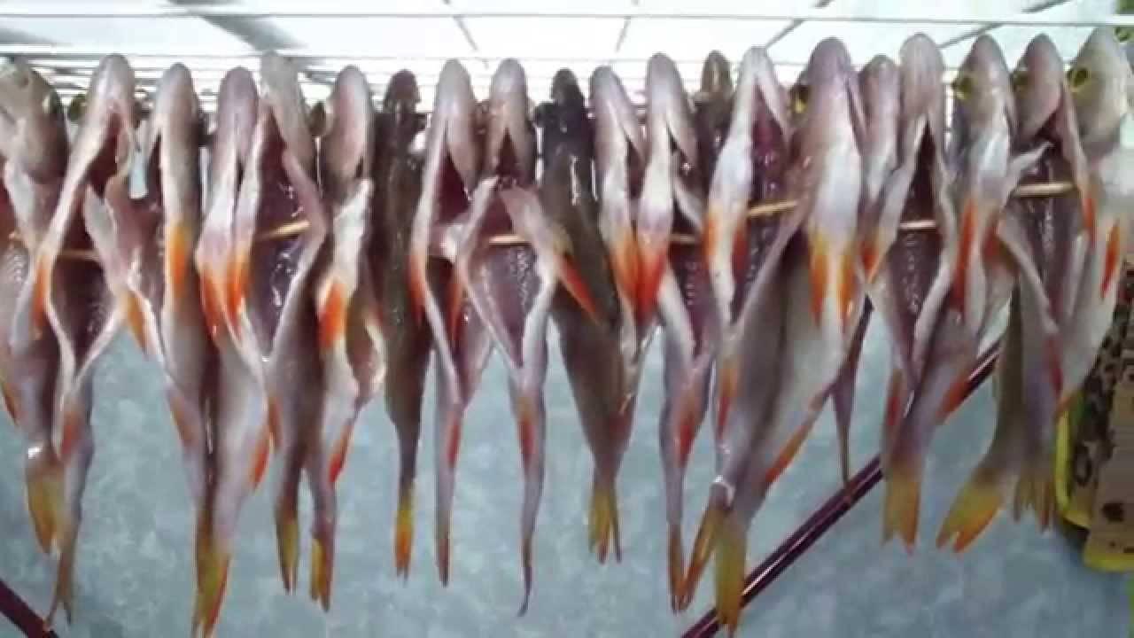12 лучших рецептов маринада для копчения рыбы