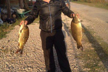Рыбалка в тольятти! купоны на платную рыбалку на водоёмах в с. хрящёвка от рыбхоза «биоресурс»
