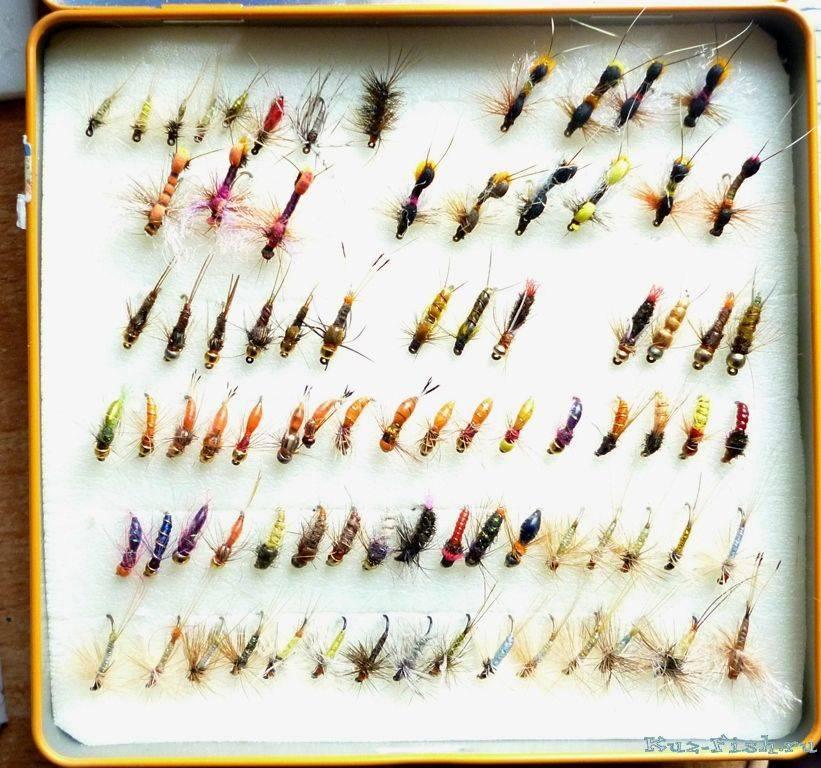 Ловля хариуса осенью: выбираем снасти для осенней рыбалки
