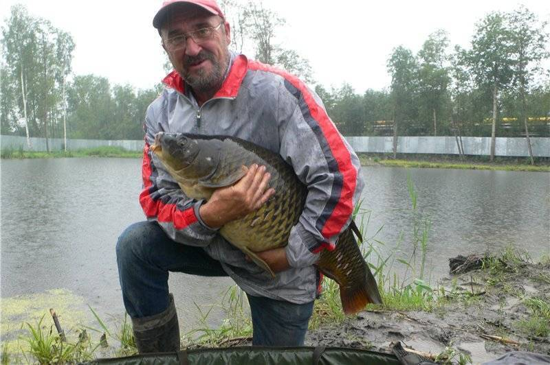 Рыбалка в дождь: клюет ли рыба на реке после дождя? клев карасей и окуня, карпа и сома. можно ли ловить форель в дождливую погоду?