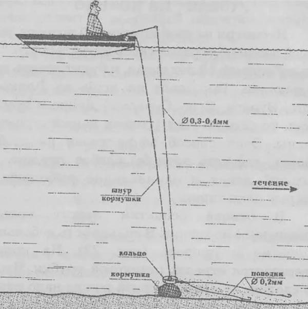 Ловля леща на кольцовку: схема снасти, техника ловли, прикормка