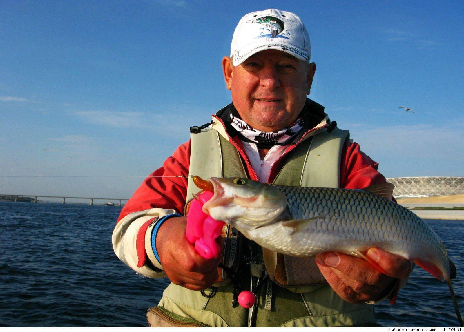 Рыбалка в волгоградской области (34) | карта рыболовных мест