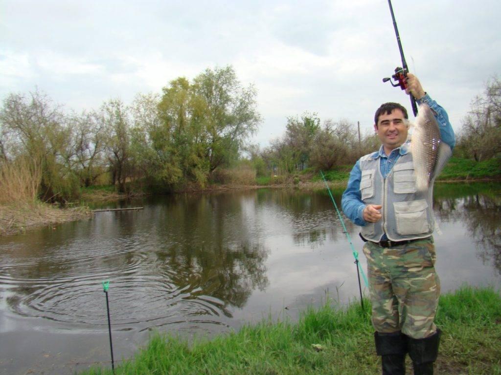 12 лучших рыболовных мест в липецкой области. платные и бесплатные | животный мир