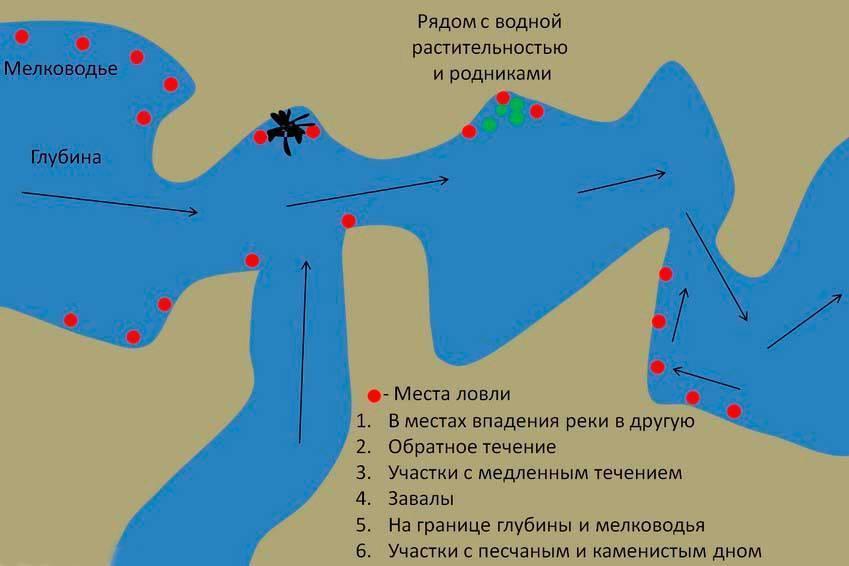 Самые рыбные места в ставропольском крае и сезонный запрет