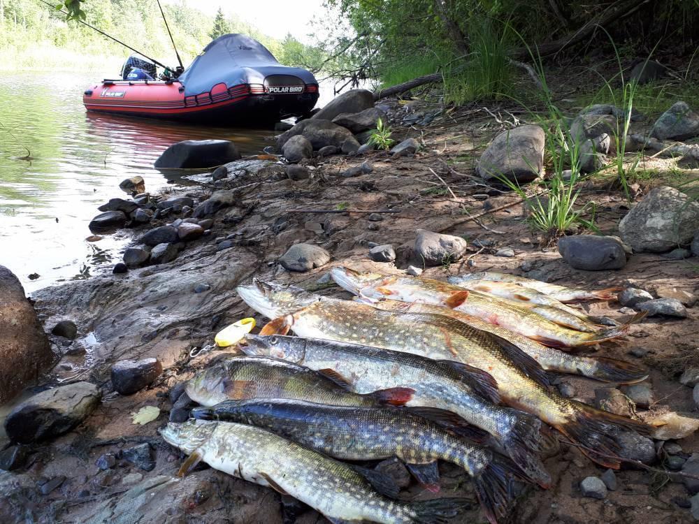 Ладожское озеро — фото, отдых, рыбалка — плейсмент