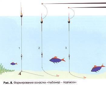 Ловля леща: на что клюет, как правильно ловить, техника рыбалки