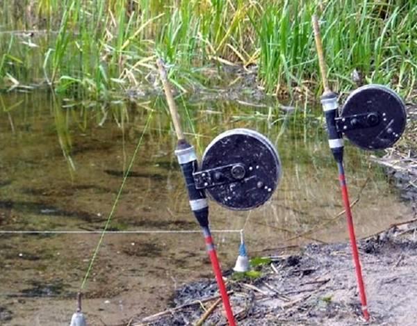Ловля карася на резинку: подготовка снасти и подкормка рыбы