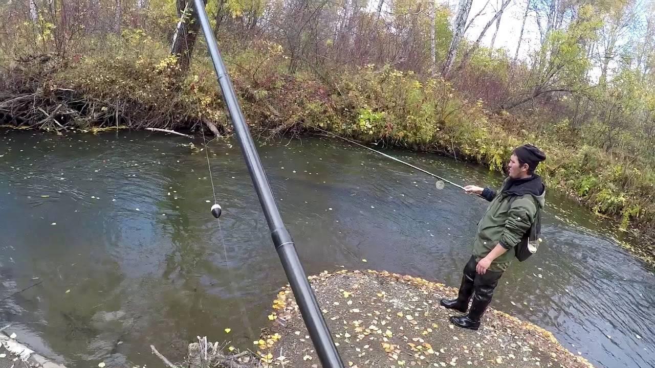 Ловля хариуса зимой: зимняя рыбалка на мормышки и другие снасти на малых реках. на что клюет и чем прикормить? лов в красноярском крае и других местах