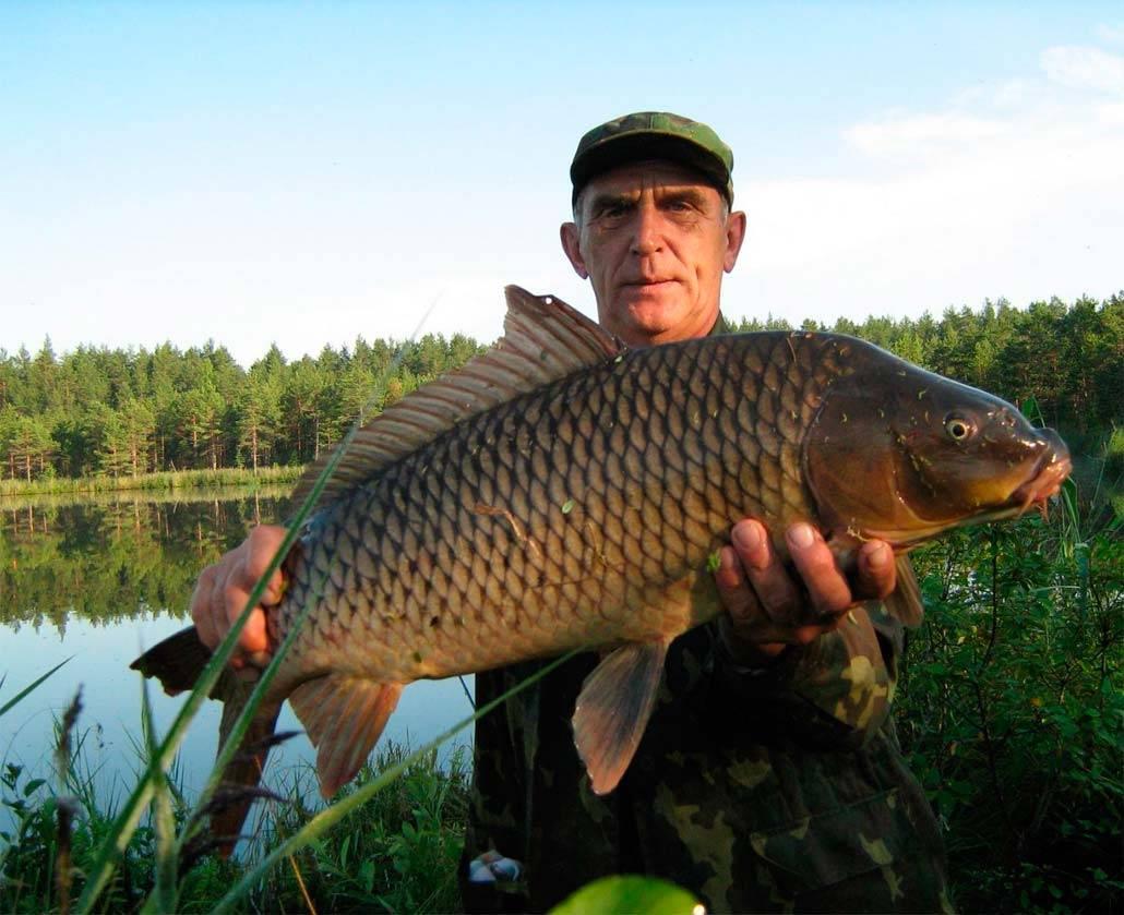 Рыбалка в Великом Устюге — лучшие места для рыболовов