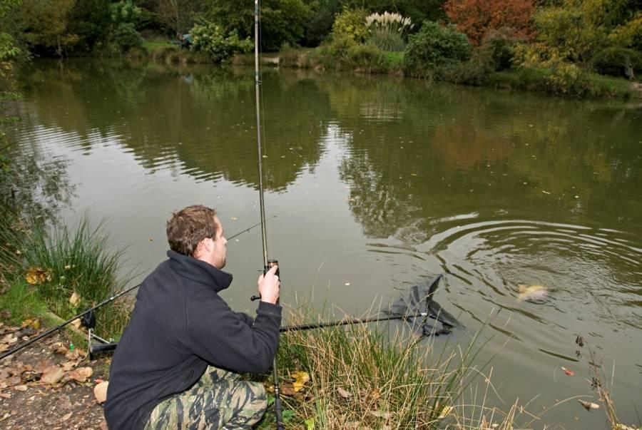 Ловля сазана в сентябре – рыбалке.нет