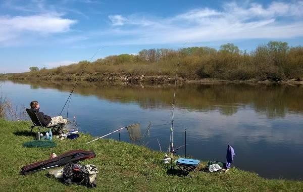 Места для рыбалки в липецкой области – платная и бесплатная рыбалка!