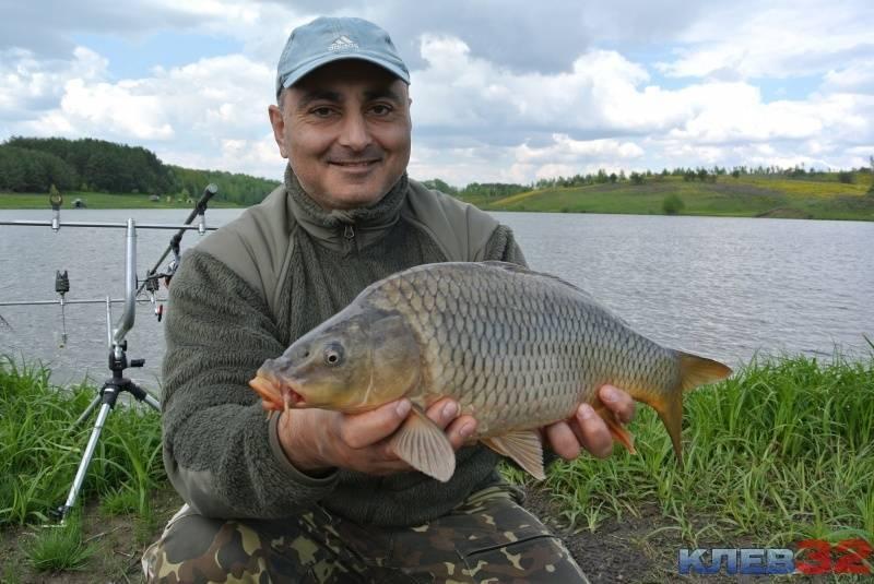Самые рыбные места в брянской области