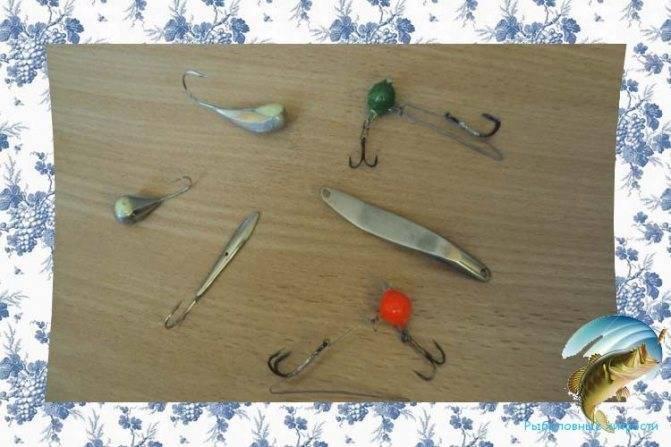 Ловля окуня на спиннинг: как ловить с берега, выбор снастей для рыбалки