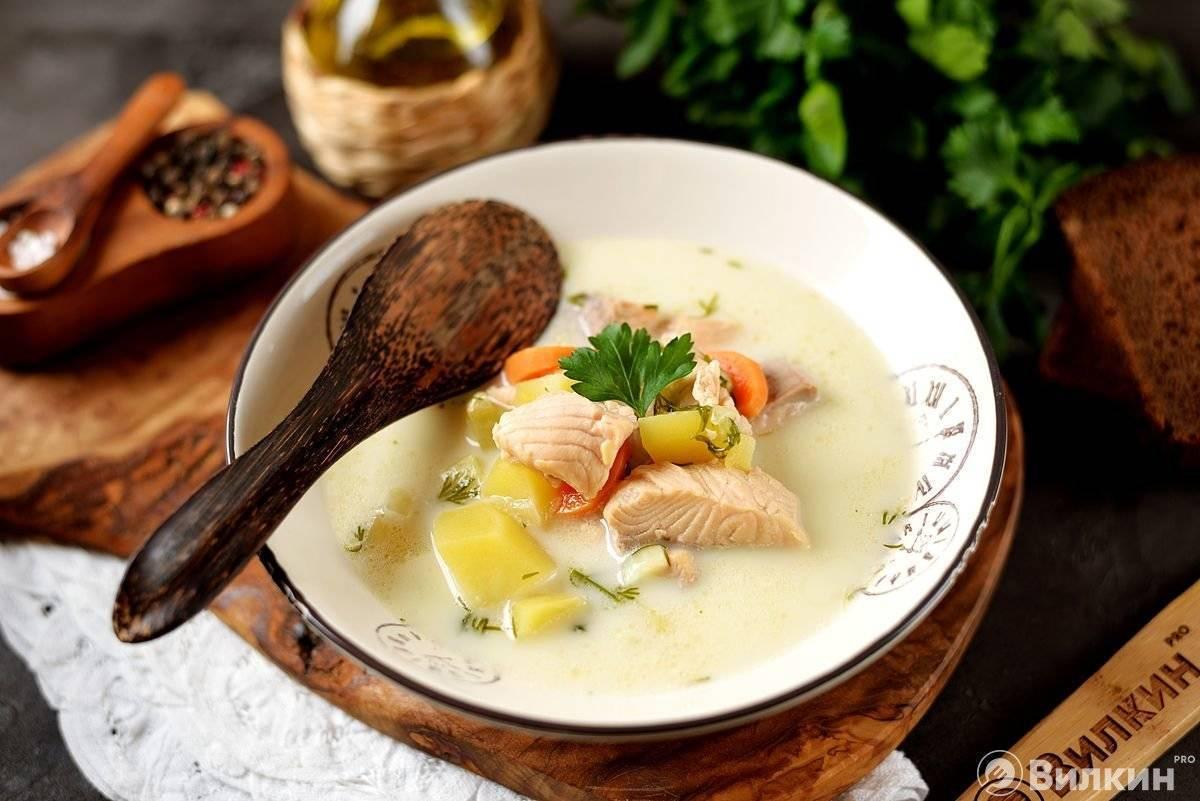 Уха по фински - рецепты рыбного супа со сливками, молоком и плавленным сыром