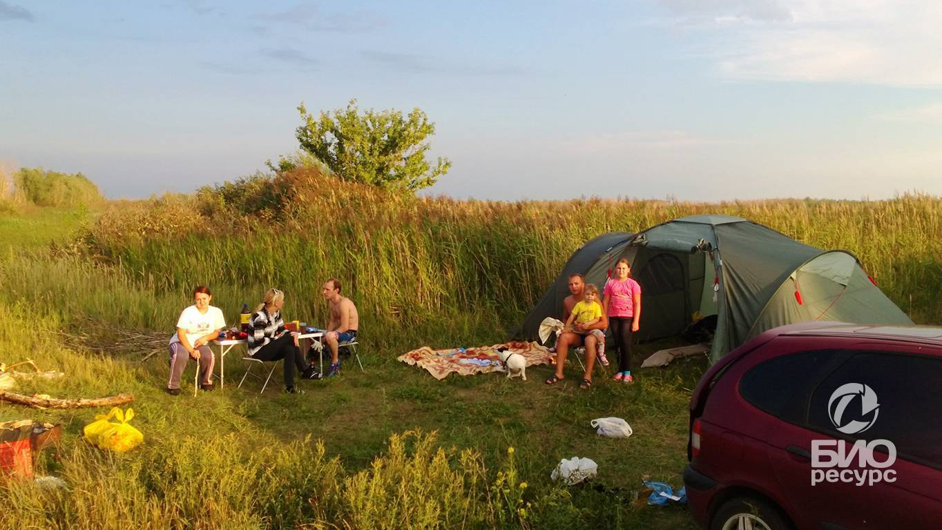 Рыбалка в тольятти: лучшие места для ловли (лопатино, хрящевка, васильевские озера), видовой состав рыб