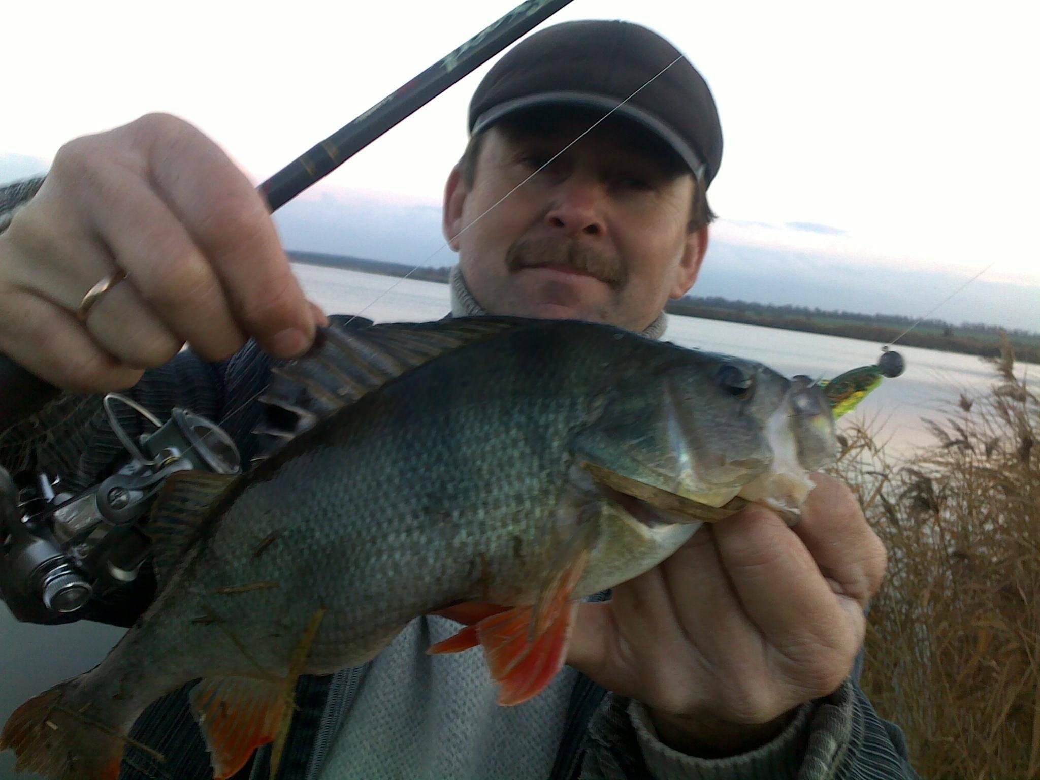 Окунь в ноябре по первому льду – где искать, на что ловить | re:fishing.ru