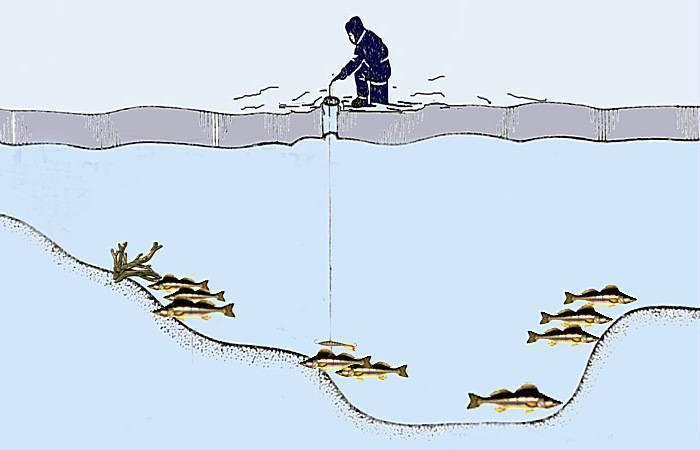 Рыбалка на черном море
