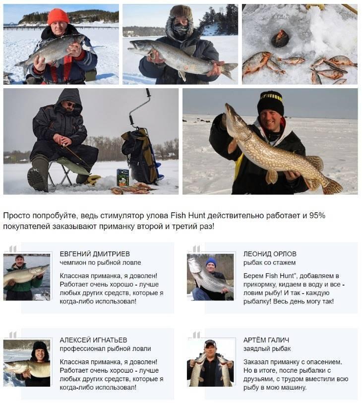 Отзывы рыбаков на активатор голодная рыба (fishhungry). отзывы на приманку и прикормку фиш хангри (видео)