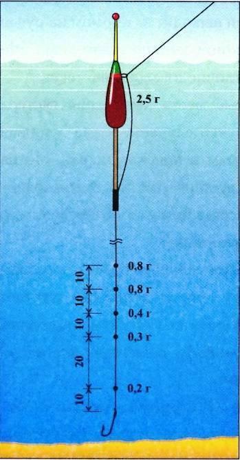 Маховое удилище - что это такое, цена и виды: 7, 8, 6 метров
