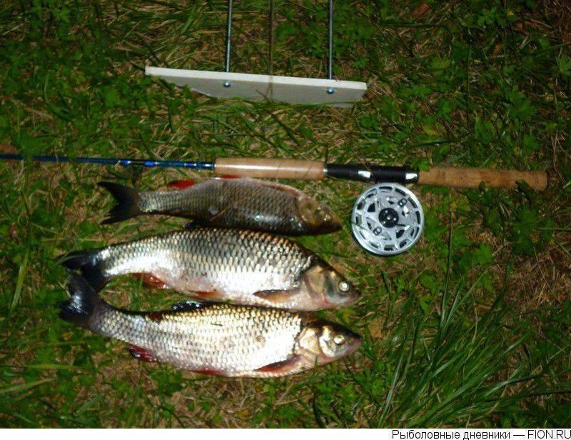 Рыбалка в брянской области на десне - про рыбалку