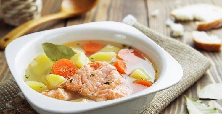 Уха по-фински – 5 лучших рецептов