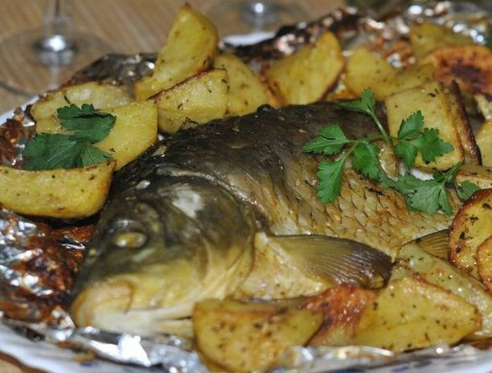 4 вкусных рецепта приготовления сазана