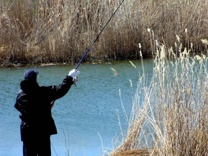 Особенности оснастки для ловли рыбы на поплавочную удочку